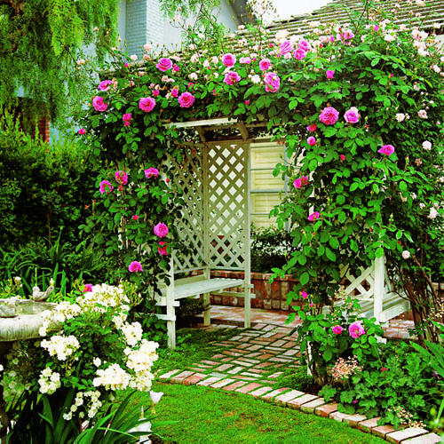 garden lattice ideas arbor